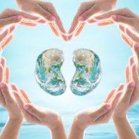 Five ways to keep your kidneys healthy