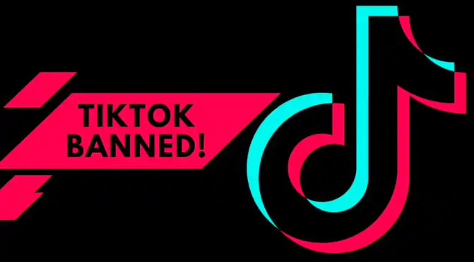 TikTok Expects Over $6 Billion Loss After India's Ban On App